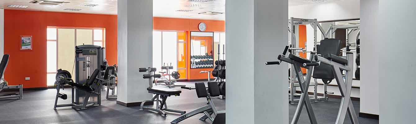 health_fitness3_new